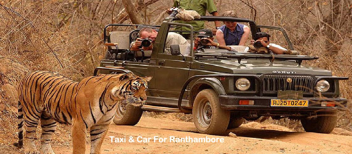 Book Taxi, Car, Cab for Ranthambore Wildlife Package